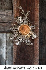 """""""Eguzkilore"""", tradition flower of the sun, the protective flower at the entrance of the houses of the Basque country."""