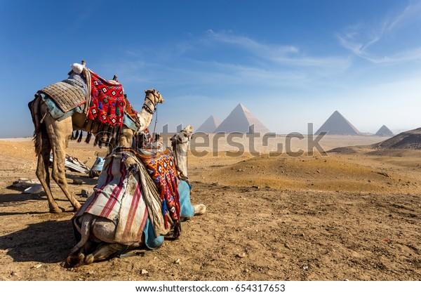 Египет. Каир - Гиза. Общий вид пирамид