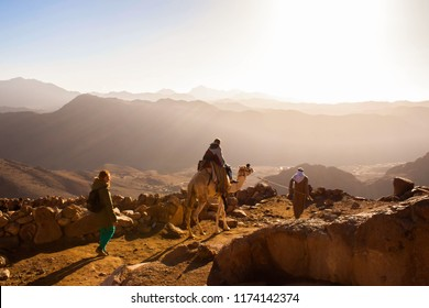 Egypt travel. Climbing on the Sinai mountain. Camel rider.