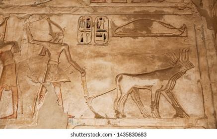 Egyptian Hieroglyphs in Medinet Habu Temple, Luxor City, Egypt