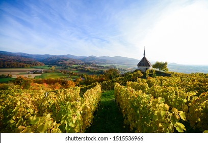 Ehrenkirchen Chapel Wineyard Autumn Germany