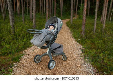 Eidapere/Estonia - 22.08.2017: A  baby is sleeping in a stroller in a forest