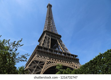 The Eifel tower among trees and hedges in Paris, France