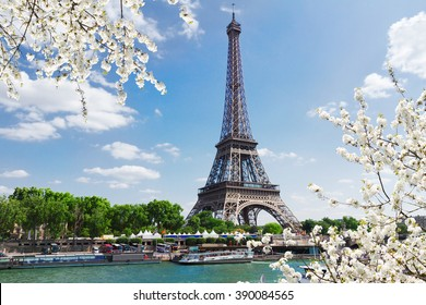 Eiffel Tour over Seine river with spring tree, Paris,  France