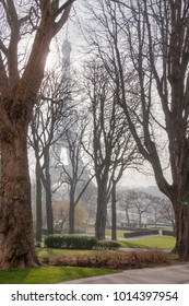 The Eiffel Tower barely visible in the early morning and trees of the Trocadero gardens in Paris France.