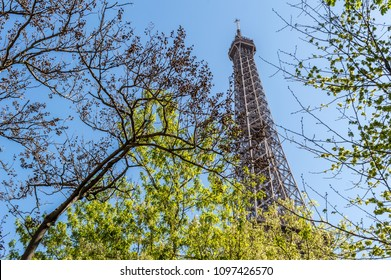 Eiffel tower behind some trees on a sunny spring day - landscape