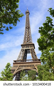 Eiffel tower in the embrace of nature