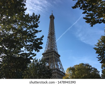 The Eiffel tower framed by trees in the foreground and a bright blue sky as the perfect backdrop.