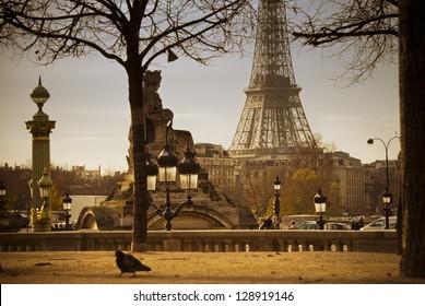 Eiffel Tower seen from Tuileries Garden in Paris, France..