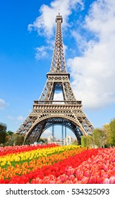 Eiffel Tower in sunny day with blooming flowers, Paris, France