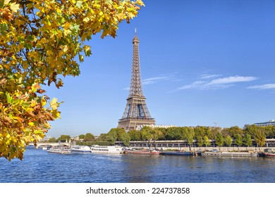 Eiffel Tower with a yellow tree on the front, Paris, France