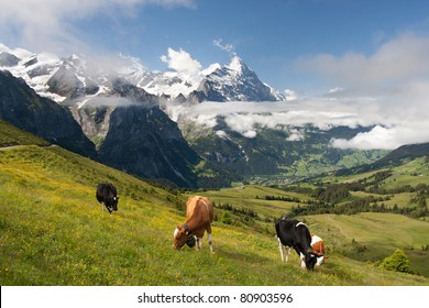 Eiger, Schreckhorn and neighborhood in Berner Alpen, Switzerland