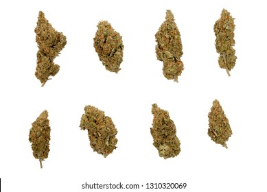 eight different shaped Cannabis sativa flower buds, isolated on white background