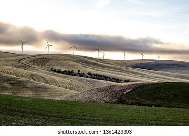 Eight Wind Turbines on rolling farm fields under a cloudy sky on the Palouse, Washington State