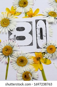 An eightieth birthday card design of a stamped number eighty surrounded by pressed daisies and yellow lesser celendine flowers