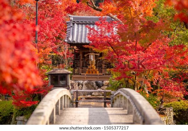 일본 교토에 있는 아름다운 정원과 낙엽을 볼 수 있는 유명한 아이칸도 또는 아이칸도 젠린지.