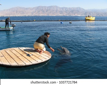 Eilat, Israel - April 5 2009: People observes swimming dolphin in park Dolphin reef