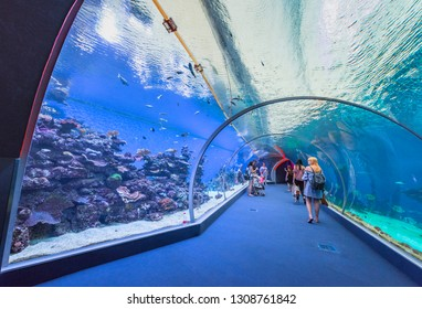 Eilat, Israel - June 2018: tourists on a visit in the underwater observatory