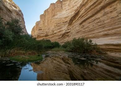 Ein Avdat National Park in Israel. - Shutterstock ID 2031890117
