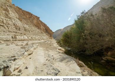 Ein Avdat National Park in Israel. - Shutterstock ID 2031890120