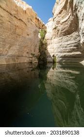Ein Avdat National Park in Israel. - Shutterstock ID 2031890138