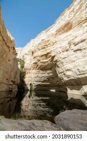 Ein Avdat National Park in Israel. - Shutterstock ID 2031890153