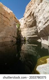 Ein avdat national park Israel. - Shutterstock ID 2033780375