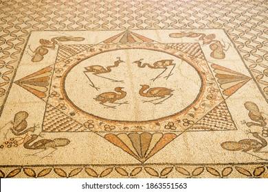 Ein Gedi A synagogue mosaic floor remains of a Judeo-Aramaic inscription , Israel , nov, 2020