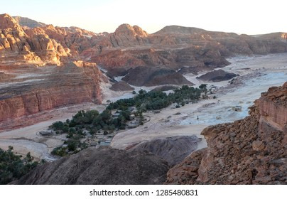 Ein Khudra oasis in the desert region of  Sinai Peninsula, Egypt - hidden green oasis in a secluded sandy basin encircled by vertical rock walls. Sunset and panoramic view on Ein Khudra oasis