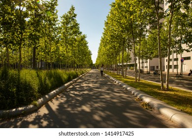 Eindhoven, The Netherlands, June 2nd 2019. The Torenallee promenade at creative district Strijp S during daytime with shadows of the trees falling over the avenue