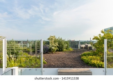 Eindhoven, The Netherlands, June 4th 2019. View of the beautiful rooftop garden of the old Philips factories at Strijp S with flowers and plants greenery on a sunny day in summer