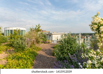 Eindhoven, The Netherlands, June 4th 2019. View of the luxurious rooftop garden of the old Philips factories at Strijp S with lots of flowers and plants greenery on a sunny day in summer