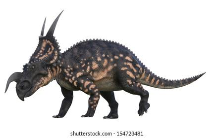 einiosaurus charge walking