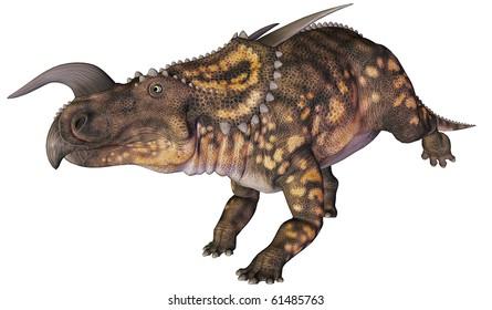 einiosaurus running