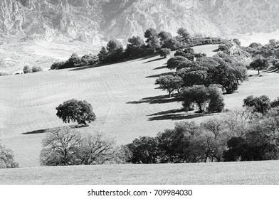 El Burgo, Sierra de las Nieves, Malaga, Andalusia, Spain
