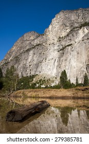 El Capitan with dead tree in watter