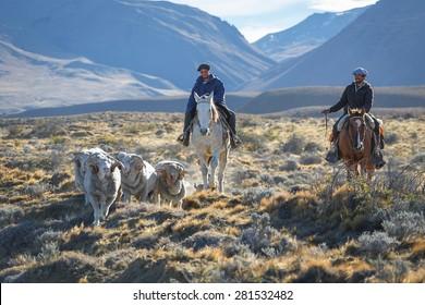 EL CHALTEN, ARGENTINA - APRIL 16: Gaucho against the backdrop of the famous mount Fitz Roy , Los Glaciares National Park, Patagonia, Argentina, April 16, 2015