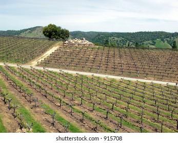 El Dorado Winery