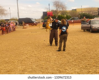 El Mirage, Arizona / USA - February 2, 2019: K9 Police Puppy, Belgian Malinois, detaining a suspect by biting their arm during an exhibition at the Safety Awareness Day in El Mirage Arizona