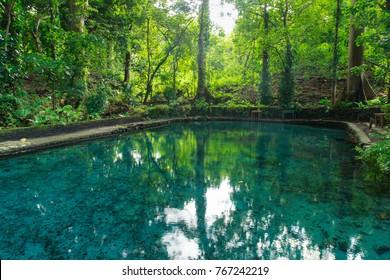 El Ojo de Agua is natural spring pool on Ometepe Island in Nicaragua.