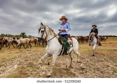 El ROCIO, ANDALUCIA, SPAIN - 26 JUNE 2016: Shepherd woman equestrian leads a herd of wild horses on baptism. Young.