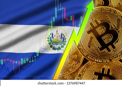 El Salvador flag and cryptocurrency growing trend with many golden bitcoins