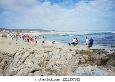 El Tabo, Chile. December 7, 2015. Central Coast. popular beach the central zone of Chile.