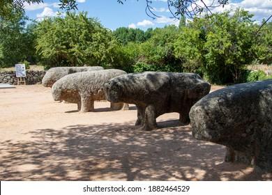 El Tiemblo, Avila, Spain. August, 2020.- Ancient roman stone bulls, known as Toros de Guisando, a celtiberian sculptures and one of the finest examples of Spanish Pre-Roman art.