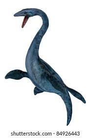 Elasmosaurus platyurus dinosaur confrontational.  A genus of plesiosaur.Extremely long neck. From the Late Cretaceous period Campanian stage, Isolated white background. Cutout, clip art illustration