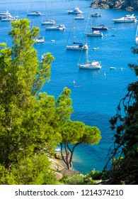 ELBA, ITALY - JULY 31, 2018: Boats and yachts on Fetovaia Beach on the Elba Island.