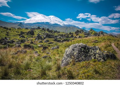 Elbrus landscape view - the highest peak of Russia and Europe. Amazing perspective of caucasian snow mountain or volcano Elbrus with green fields, blue sky background
