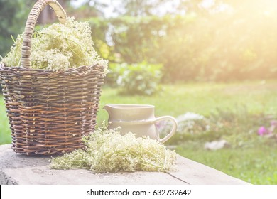 Elder blossom flower in a basket in the garden - herbs to prepare syrup with an old white jug and with sun rays