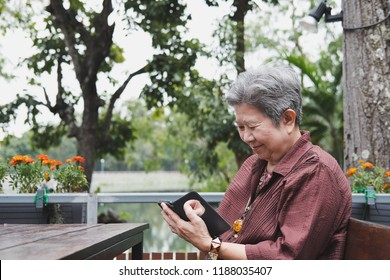 elder woman holding mobile phone in garden. elderly female texting message, using app with smartphone in park. senior use cellphone to connect with social network