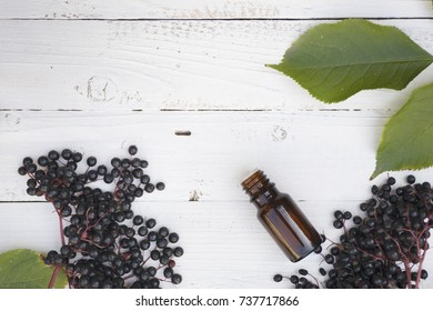 elderberry essential oil (tincture, extract, infusion) with fresh elderberries on white wooden background